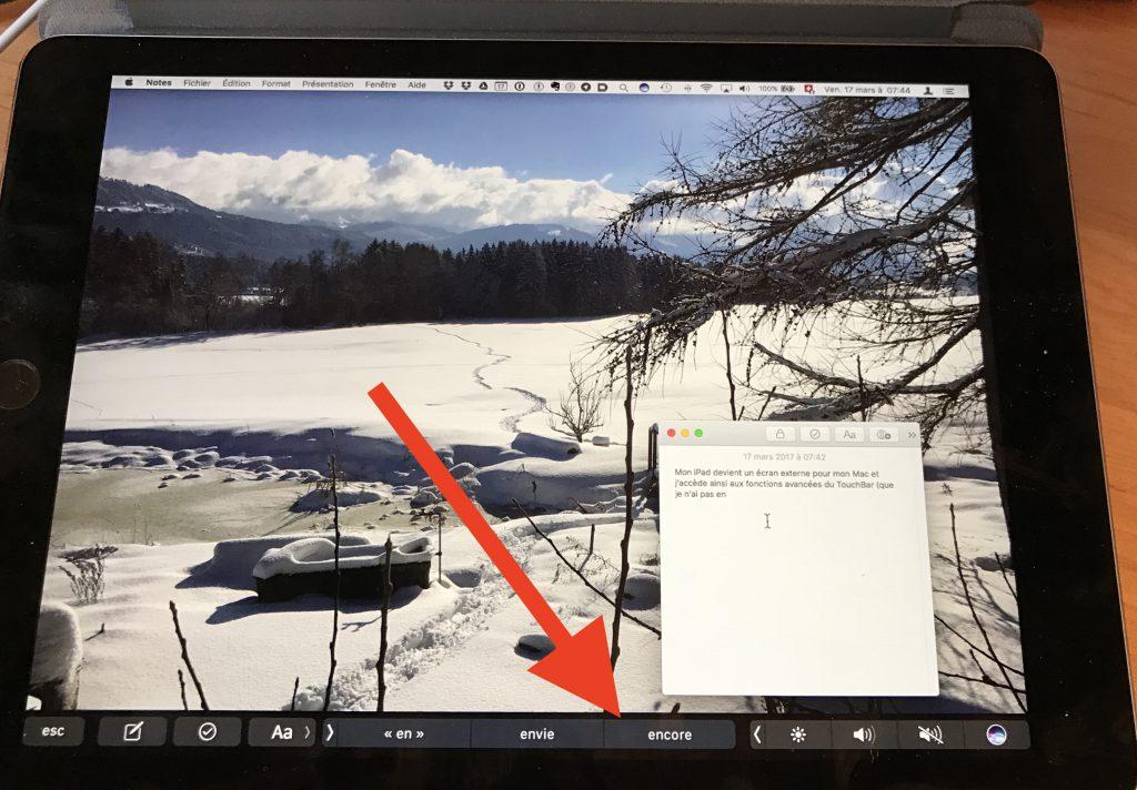 iPad en écran externe avec Duet